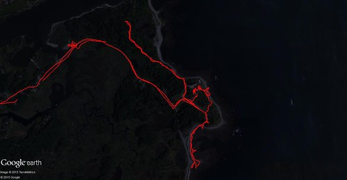 August 2015 My Tracks (Odiorne Point)