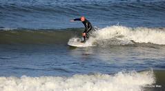 Surfing at Aberdeen (mootzie) Tags: black beach scotland aqua waves surfer surfing aberdeen surfboard balance wetsuit
