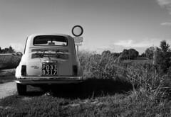 Fiat 500 (r_evolution63) Tags: auto bw italy monochrome car vintage grey monocromo blackwhite europa europe italia grigio fiat little sony bank bn 500 piccolo riverbank bianconero compact fiat500 padova piccola divieto veneto dscw7 italianstyle argine piovego provinciadipadova lungoarginerovetta viatommasosalvini