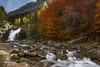 Udazken koloreak (anderto) Tags: autumn colors rio agua colores otoño monte pyrenees pirineos ordesa mendia ura erreka udazkena pirineoak filtropolarizadorcircular leehard06