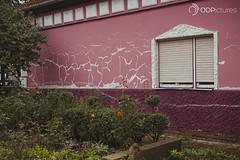 IMG_4159 (ODPictures Art Studio LTD - Hungary) Tags: urban music window canon eos concert tour report serbia band rs hungarian vojvodina 6d senta 2015 vajdasag zenta aptus cantus szerbia odpictures orbandomonkoshu odpictureshu odpictures2015