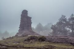 Valle de Piedras encimadas (Xavy Vp) Tags: mist mexico nikon day foggy valle dia nublado neblina puebla piedras vp xavy encimadas mistico 1224mmf4 d7100