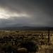 Oregon High Desert Morning