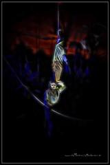 2016 10 31 De Miedo en La Muela 026 (Unos y Ceros) Tags: nochedebrujas miedo canguelo pasajedelterror espanto susto acojone pnico horror tembleque pavor sobresalto angustias sorpresa tormento congoja zozobra intranquilidad ansiedad apuro pesadilla penalidad reconcomio desazn resquemor angustia alucinaciones nochedenimas trucotrato disfraces aviaparklamuela fiestadelanoche zaragoza aragn textura pinturaluz unosyceros 2016 lightroom nikond700 zaragons zaragoneses europa unineuropea ue invarietateconcordia