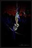 2016 10 31 De Miedo en La Muela 026 (Unos y Ceros) Tags: nochedebrujas miedo canguelo pasajedelterror espanto susto acojone pánico horror tembleque pavor sobresalto angustias sorpresa tormento congoja zozobra intranquilidad ansiedad apuro pesadilla penalidad reconcomio desazón resquemor angustia alucinaciones nochedeánimas trucotrato disfraces aviaparklamuela fiestadelanoche zaragoza aragón textura pinturaluz unosyceros 2016 lightroom nikond700 zaragonés zaragoneses europa unióneuropea ue invarietateconcordia