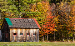 Multi-Colored Roof, Stark, New Hampshire (edleckert) Tags: red plant color tree green horizontal barn photography day unitedstates newhampshire fallfoliage northamerica stark newenglandusa deciduoustree groveton easternusa