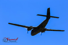 Warbirds Downunder 2015-2118.jpg (naemickpics.com) Tags: flying aviation au australia nsw newsouthwales warbirds raaf warbird warplane wignall 2015 temora naemickpics