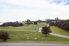 097 1982-08-12 Plains of Abraham, Quebec City (crobart) Tags: plains abraham quebec city kodachrome slide