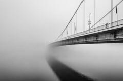 Elisabeth Bridge (Budapest) (Bálint György) Tags: top20bridges