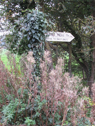 East Lulworth: Path to Arish Mell (Dorset)