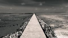 Nordseekste - Mrz 2015 (grieger_max) Tags: strand nordsee steg kste endlos monoton