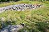 Historical stone labyrinth (Staffan Swede) Tags: island stockholm labyrinth archipelago skärgård landsort labyrint troytown öja trojeborg