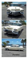 1956 Cadillac_002 (C&C52) Tags: vintage voiture cadillac triptyque collector