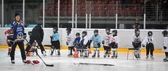 Schnuppertag Kids on ice 19-12-2015 (62)
