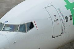 Transavia France F-GZHE Boeing 737-8K2 Winglets cn/29678-2615 @LFPO / ORY 26-07-2015 (Nabil Molinari Photography) Tags: france boeing transavia winglets ory lfpo 7378k2 fgzhe cn296782615 26072015