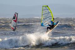 PC311713-Edit (Brian Wadie Photographer) Tags: gulls oystercatcher windsurfing kiting em1 goodlight 14xtc avonbeach canon70300lis hemgistburyhead