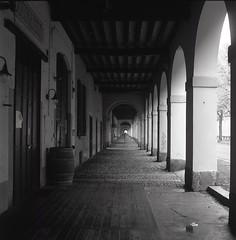 Pavia, portici di Viale Bligny. (GiannLui) Tags: vialeblignypaviaportici prospettiva tridimensionalit 6x6 yashica yashicamat124g tmax400 kodak 400asa