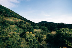 View from Kiyomizu-dera temple (Eddy+) Tags: canon 7d 1022mm usm landscape portrait wideangle