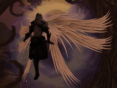 Crow (Kaia Krystal) Tags: firestorm secondlife beastforest celestial shadow fighter warrior paladin demon fallen spectre phantom fantasy medieval roleplay rp secondlife:region=cherokee secondlife:parcel=beastforest secondlife:x=126 secondlife:y=76 secondlife:z=60
