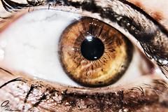 Eye detail (Ortiz_Photography) Tags: nikon 7200 nikond7200 nikonphotography street photography photographyoftheday picoftheday streetphotography sport aggressive inline nikonlovers roller rollers aggresiverollersl dyedhair purplehair dyed hair altmodel model cute beautiful girl redlips dress