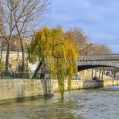 Willow on the embankment (Ivanov Andrey) Tags: river willow tree branch leaf autumn yellow bridge arch lamp embankment stone wall pavement history walking sky cloud blue water reflection fence parapet wave city street area quarter walk travel paris senna france