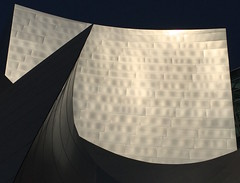 Steel Point (Jenny Beatty) Tags: disneyconcerthall losangeles form light steel gehry miksang