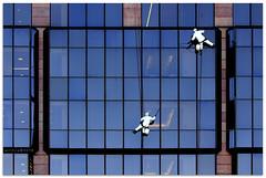 Sky scrapers - 4261 (willfire) Tags: willfire singapore newzealand auckland window cleaner abseil descend extreme sport sky scraper glass danger risk occupationalhazard