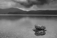 Black & White (andreas.bullinger) Tags: water eibsee wasser see stone stein wald wood samyang 85mmf14 landscape garmischpartenkirchen cloudy wolkig zugspitze mountain berg