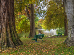 October in the Park (BethR.photography) Tags: autumn fall parks victoriabc