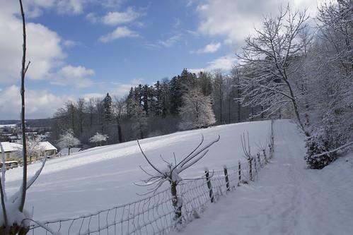 Winterthour