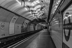 Victoria line - King's Cross St. Pancras (MoreToJack) Tags: victorialine londonunderground underground london railway platform vitreousenamel kingscrossstpancras kingscross stpancras roundel station lu tube