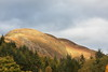 Conic Hill Balmaha (monyet_uk) Tags: conichill highlandboundaryfault balmaha lochlomond trees