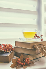 Cup of tea, old books, autumn leaves and berries (victoria.kondysenko) Tags: tea window book weather cold room mood rest free warm leisure sill white calm view drink life cup windowsill morning living cozy season weekend time retro still moody shabby interior relax home house vintage space comfort reading rustic hot