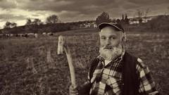 (corvo_torvo) Tags: barba portrait ritratto ritrattoinbw seppia transumanza mucche muccapodolica bastone pastore babbonatale