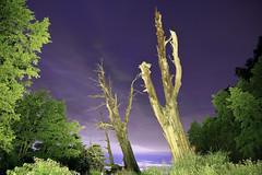 IMG_3649-3655_Overlay (Ethene Lin) Tags: 新中橫 塔塔加 夫妻樹 夜景