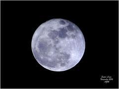 Super Luna Noviembre 2016 (-Angie Z) Tags: superlunanoviembre2016 luna noviembre cielo sky moon bluemoon lifeinblue supermoon