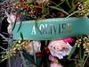 Olivier (Kay Harpa) Tags: cimetièremontparnasse novembre2016 ourdeardeadpeople photokay automne thebiggestgroup paris france 14nov2016 dédicace olivier