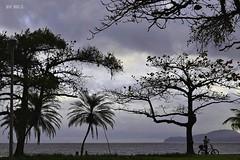 Santos City afternoon (Maria Luiza S) Tags: afternoon city beach praia clauds núvens céu sky