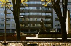_DSC8449 (adrizufe) Tags: durango ezkurdi frayjuandezumarraga parque durangaldea duranguesado bizkaia basquecountry otoo udazkena autumn aplusphoto adrizufe adrianzubia d7000 nikon nikonstunninggallery ngc walking