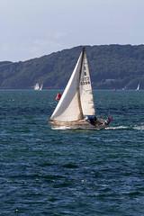 B5398 11th Sept 2016 (JDurston2009) Tags: b5398 plymouthsound devon plymouth sailing sailingboat