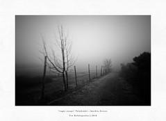 vague escape (Teo Kefalopoulos - Art Photography) Tags: lensbabyedge50 lensbaby macedoniagreece makedonia timeless macedonian μακεδονια