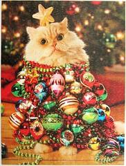 Katze mit Christbaumkugeln (Leonisha) Tags: puzzle jigsawpuzzle christmas christmastree weihnachten weihnacht cat chat katze christbaumkugeln christmastreeballs