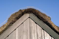 Thatched Roof (Poul_Werner) Tags: danmark denmark familie klegod 53mm beach dune family hav klit ocean roof sea sollys strand sunlight tag ringkbing centraldenmarkregion dk
