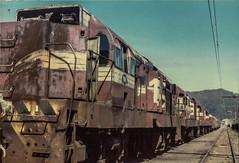 Hutt Workshops (andrewsurgenor) Tags: locomotive engine transport diesel nz newzealand train railway railroad narrowgauge rail nzr railfan
