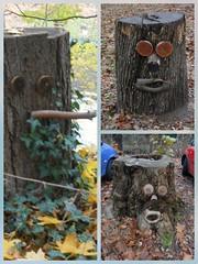 Hier hätten Bäume stehen können, nun haben sie ein Gesicht. (kleo2) Tags: baum baumstumpf baumstamm berlin berlinlankwitz berlinsteglitz berlinlichterfelde