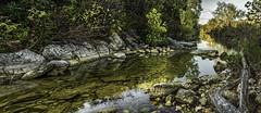 Pellucid (keith_shuley) Tags: clear water creek bullcreek austin texas olympus