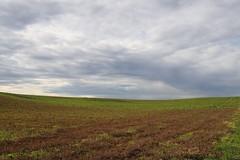 Emptiness (Xtraphoto) Tags: sky himmel clouds wolken feld field landscape landschaft minimalistisch emptiness empty leere minimum minimal