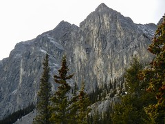 Mt Yamnuska Summit Scramble - Cliff face of the mountains to the west (benlarhome) Tags: yamnuska exshaw alberta canada scramble scrambling hike hiking trail path