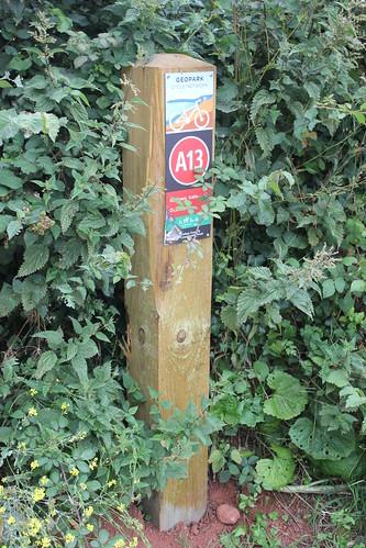 Cockington Valley Loop 054