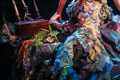 Voyage of the Little Mermaid (quietvillagers) Tags: ariel disneyworld waltdisneyworld littlemermaid thelittlemermaid hollywoodstudios disneyshollywoodstudios partofyourworld voyageofthelittlemermaid